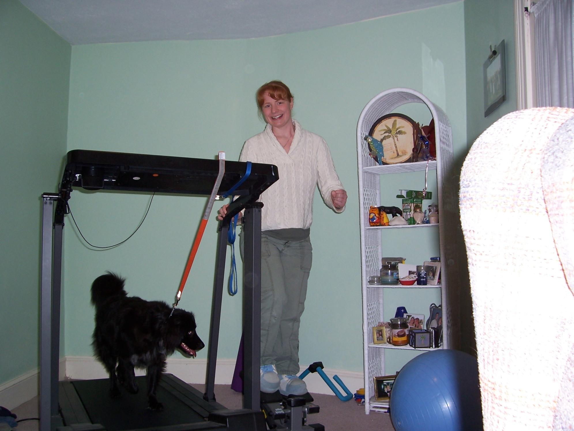 Working out withMom