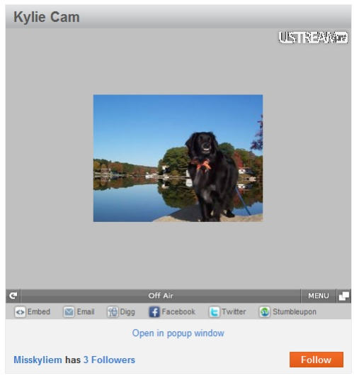 You can also click here to be brought to my Kylie Cam!