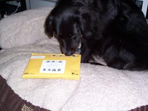 My first xmas card 2008