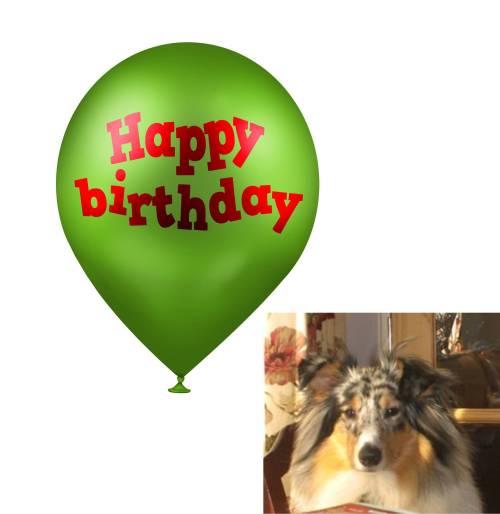 birthday-balloon-and-ludo