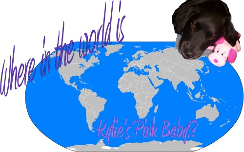 where-in-the-world-is-kylies-pink-baby-icon1