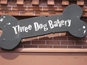 tank-and-pink-baby-3-dog-bakery