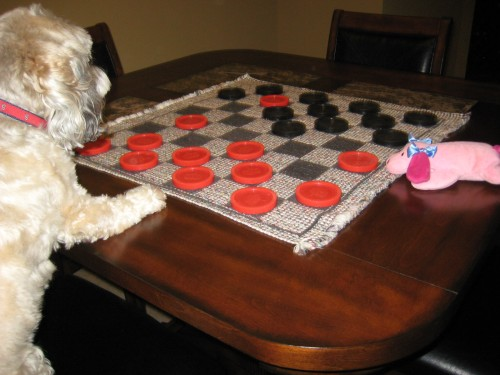 tank-and-pink-baby-checkers