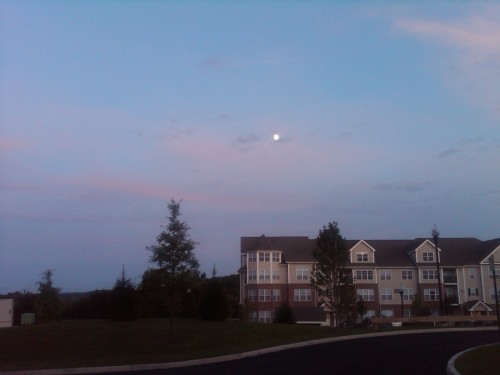 Monday 7pm  (see the MOON?!)