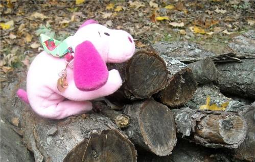 pink baby logs